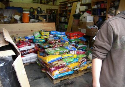 Mountainside Middle School students collect shelter supplies