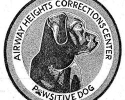 Pawsitive Prison Dog Training – Session 26 is Underway!