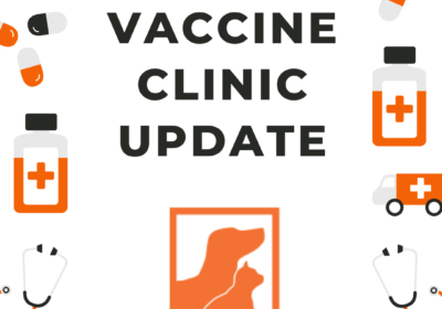 vaccine clinic update | 3.17.20