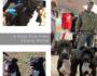 bear & bones update | the b-boys find their furever home